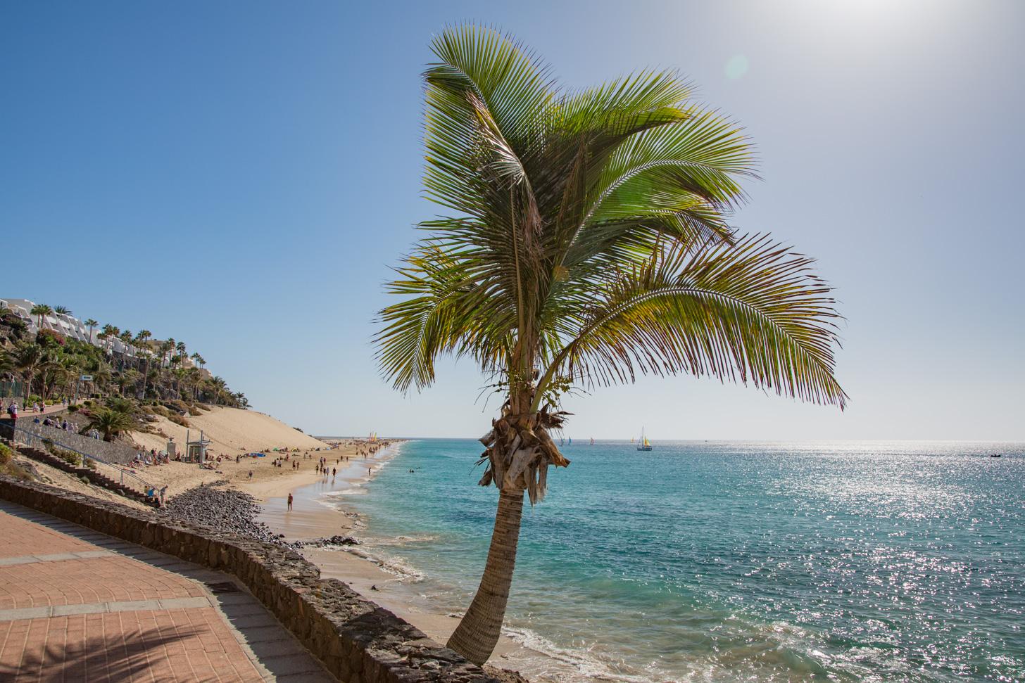 Beste reistijd voor Fuerteventura
